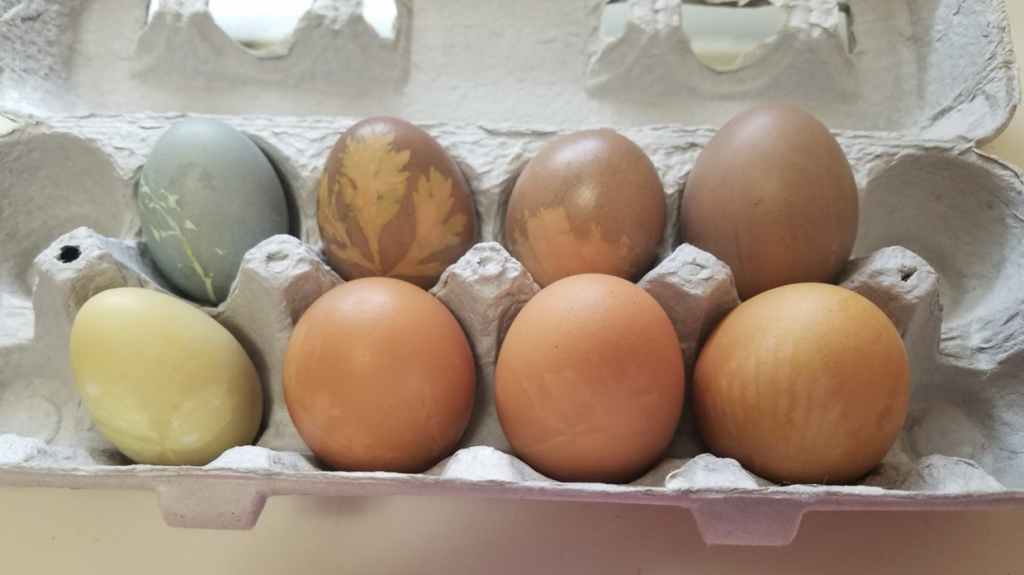 More dyed eggs