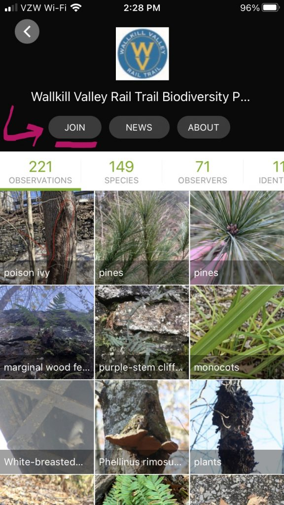 iNaturalist on iPhone