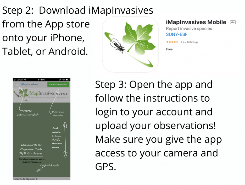 Step 2 and 3 on downloading the app and logging in to your account